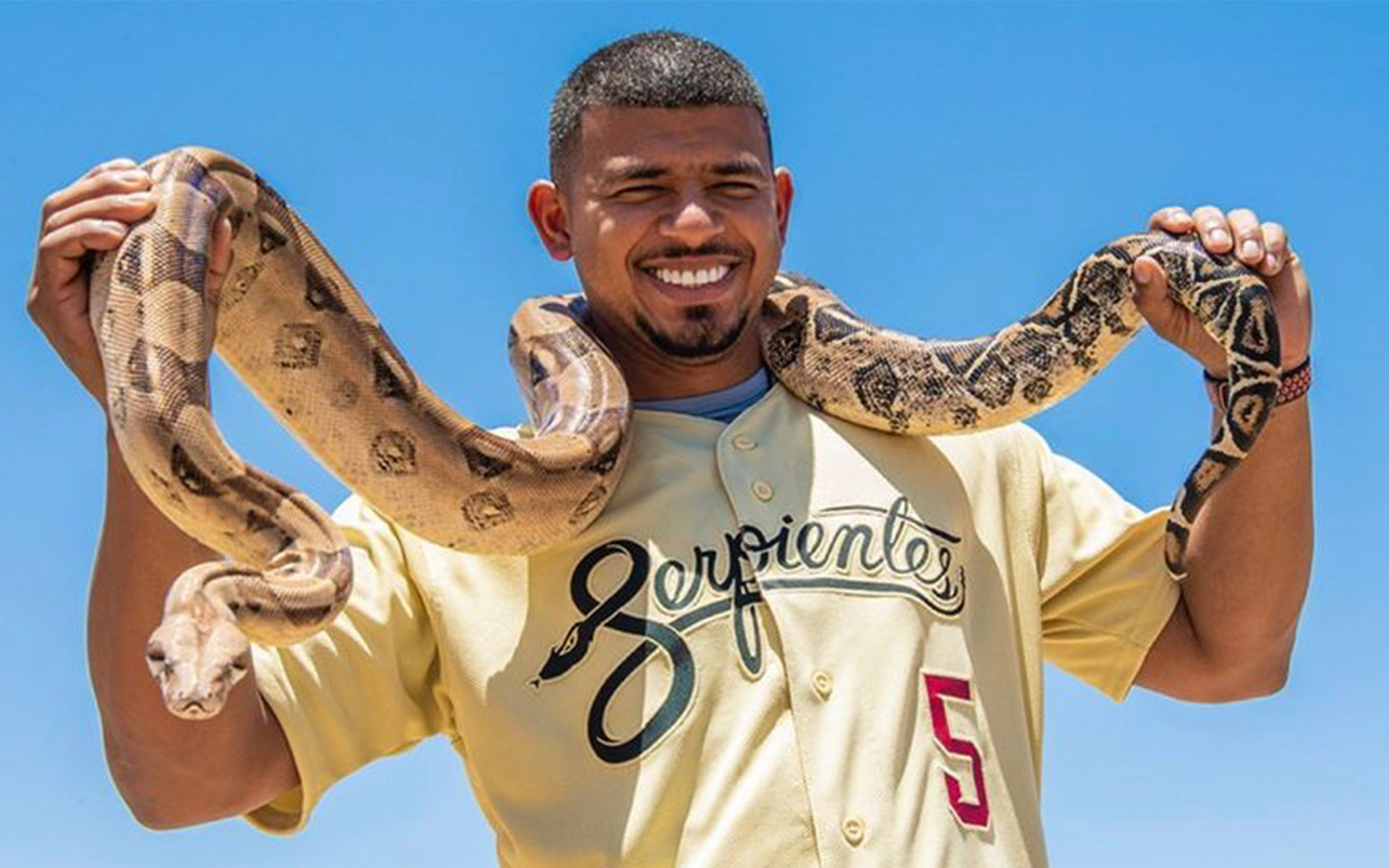 """The Arizona Diamondbacks are the next big league club to unveil their new Nike MLB City connect uniform, becoming the fifth of seven teams so far to do so in the inaugural campaign of Nike's new uniform program. The jersey is gold and reads 'Serpientes"""" across the front, which is the Spanish translation of Snakes to pay tribute to the Hispanic Culture that is prominent in Arizona. On the right sleeve is the Arizona state flag and on the left is their """"A"""" logo to highlight the Sonoran Desert's sand. Lastly, the patch on the bottom front of the jersey is a """"V"""" iocktag, which is a nod to Phoenix's moniker, the Valley of the Sun. The new caps will also carry the same color scheme as the jersey. The Diamondbacks will debut the uniforms June 18 against the Los Angeles Dodgers and they plan on wearing them six more times this season. Arizona Diamondbacks Pro David Peralta, who is Venezuelan, was very thrilled with the announcement stating """"I was really excited about that because we are involving the Spanish community in a special way. Arizona has a really big Hispanic community, for me to be part of that, I am really proud and excited about it"""". D-Backs President and CEO Derrick Hall worked with Nike and their players all last season to survey their thoughts and opinions on the new jerseys. The Serpientes jersey will replace their alternate """"Los D-Backs"""" jersey and be a part of the regular jersey rotation next season depending on if the fans like it. Hall stated """"If there's strong support and enthusiasm from the fans or players, we will encourage our guys to rotate them in more"""". The team has not been afraid of being the first on trying new jersey designs out. Back in 2016 season, the team unveiled a complete redesign featuring a polarizing gradient snake skin pattern on their jerseys and pants, which to say the least didn't do so well. The next MLB teams to debut their 2021 city connect jerseys will be the San Francisco Giants in July and the Dodgers in August. So far, th"""